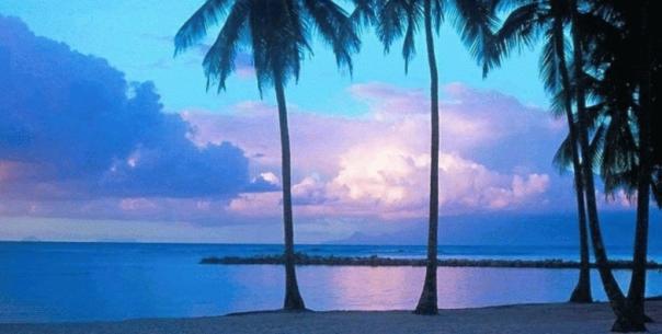 tropical_island_setting
