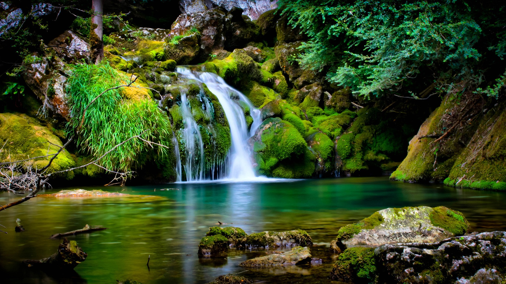 Garden Of Eden The New Divine Humanity