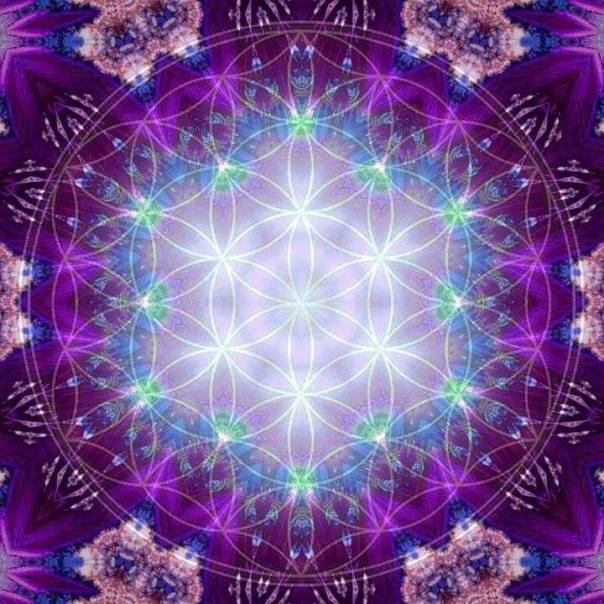 Violetlightfloweroflife