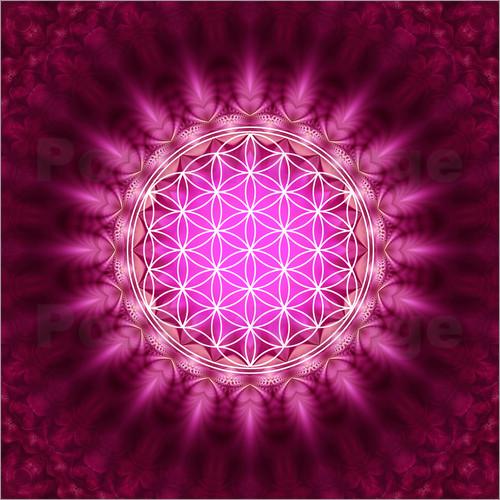 lava-lova-blume-des-lebens-symbol-harmonie-und-balance-rot-242734