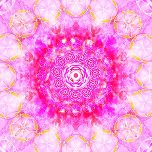 Red Rose Mandala
