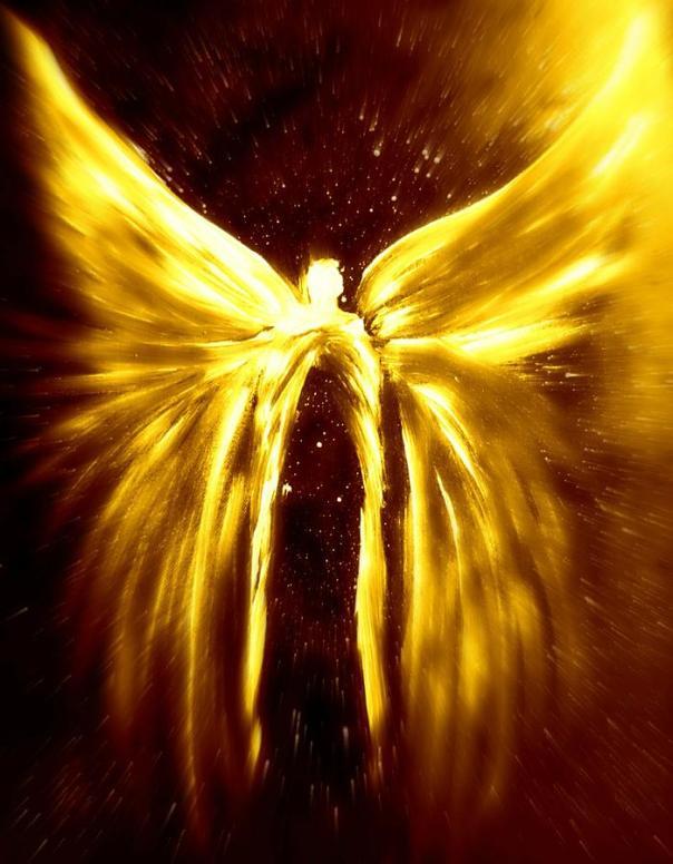 light-angels